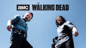 The Walking Dead (2017)