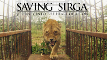 Saving Sirga: Journey into the Heart of a Lion (2016)
