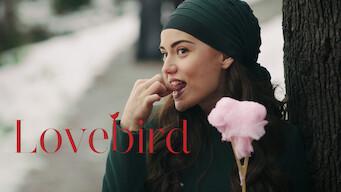 Love Bird (2013)